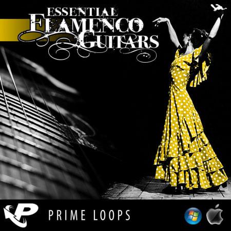 Essential Flamenco Guitars Samples Loops Splice Sounds
