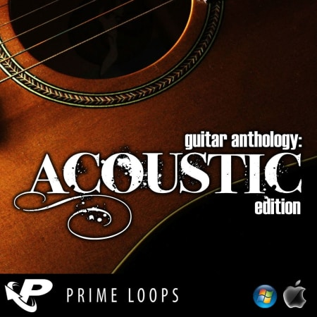 Guitar Anthology Acoustic Edition Samples Loops Splice