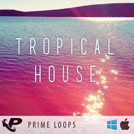 Tropical House - Samples & Loops - Splice Sounds
