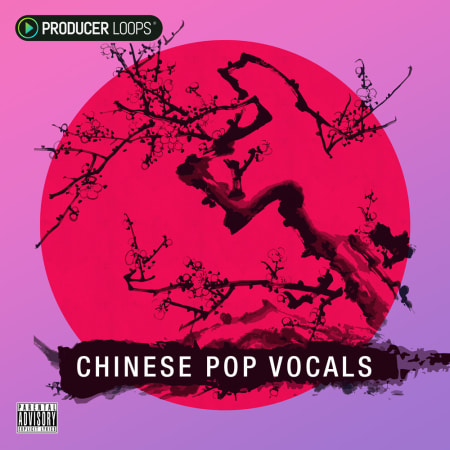 Chinese Pop Vocals Vol  1 - Samples & Loops - Splice Sounds