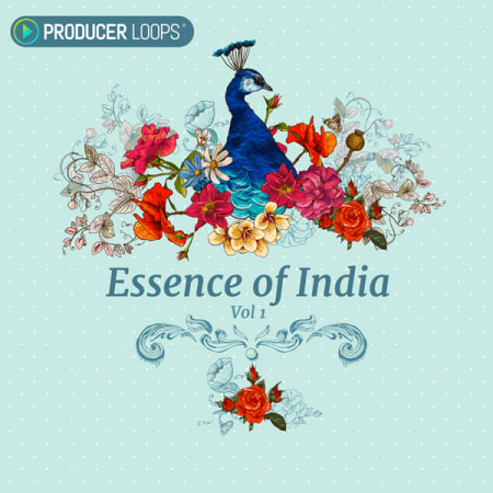 Essence of India Vol  1 - Samples & Loops - Splice Sounds