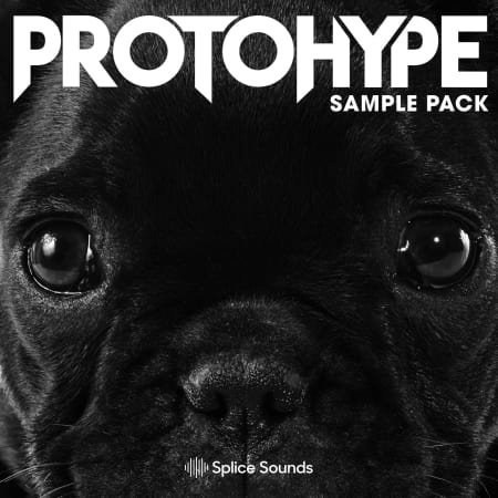 Protohype Sample Pack - Samples & Loops - Splice Sounds