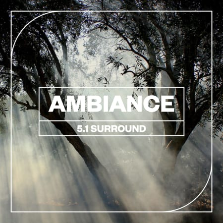 Ambience: 5 1 Surround - Samples & Loops - Splice Sounds