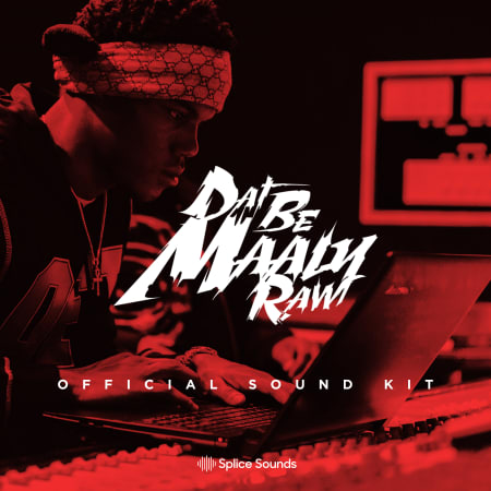 Maaly Raw Official Sound Kit - Samples & Loops - Splice