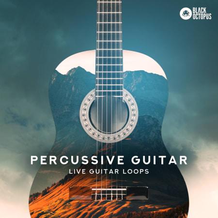 Percussive Guitar Samples Loops Splice Sounds
