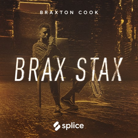Brax Stax: Braxton Cook - Samples & Loops - Splice Sounds