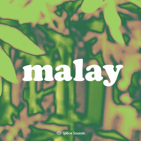 Malay Sample Pack - Samples & Loops - Splice Sounds