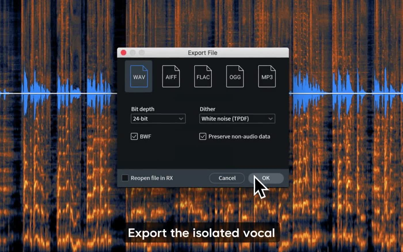 RX 7 Standard audio repair and noise reduction plugin by iZotope